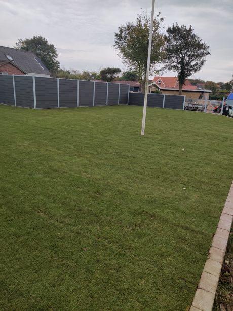 Nyt rullegræs